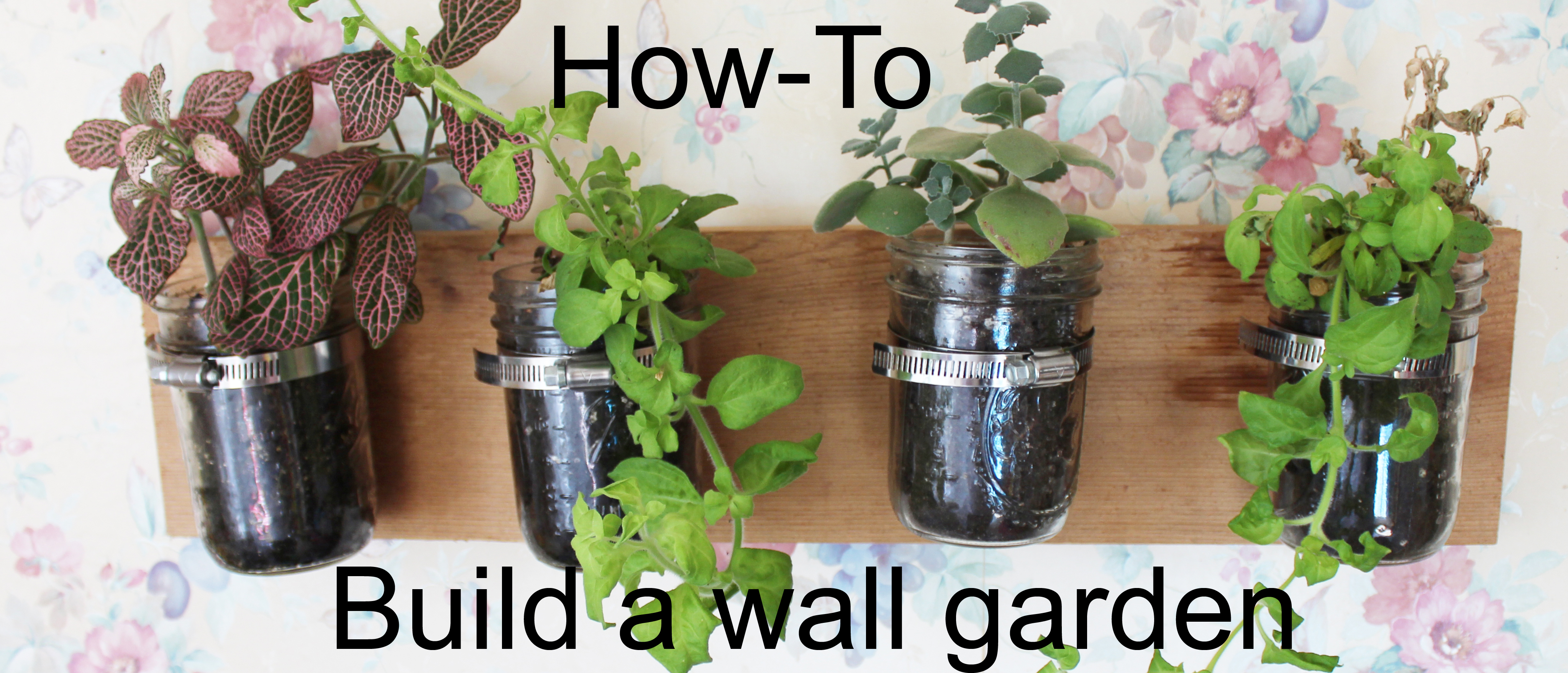 How to build an indoor wall garden dads Indoor living wall herb garden